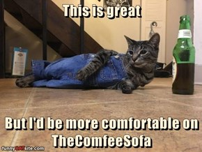This is great  But I'd be more comfortable on TheComfeeSofa