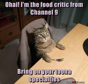 Ohai! I'm the food critic from Channel 9  Bring on your toona specialties