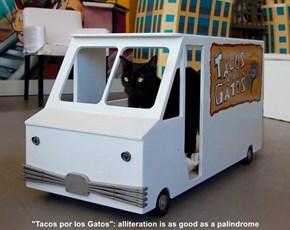 """Tacos por los Gatos"": alliteration is as good as a palindrome"
