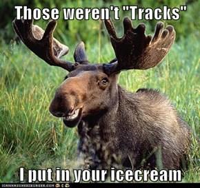 "Those weren't ""Tracks""  I put in your icecream"