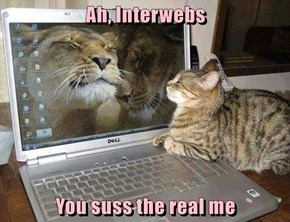 Ah, Interwebs