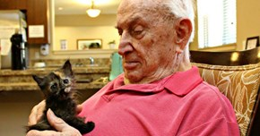 Animal Shelter Partners With Retired Seniors to Help Care for Their Youngest Rescue Kittens and the Results Are Wonderful