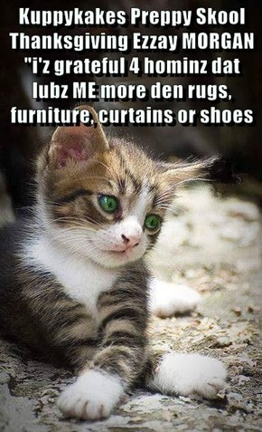 "Kuppykakes Preppy Skool Thanksgiving Ezzay MORGAN ""i'z grateful 4 hominz dat lubz ME more den rugs, furniture, curtains or shoes"