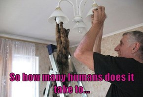 So how many humans does it take to...