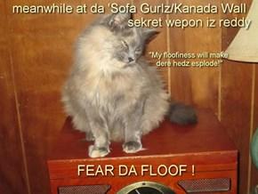 """da 'Sofa Gurlz hab a """"sekret wepon"""" 2 defend da Wall"""