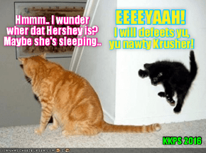 """Rio LoLympics: Teh bery yung kitten, Hershey decides to play teh new super popular Game """"Mischeff Defeats Krusher"""" wiff her mom, but teh yung kitten forgot to tell her mommie! Mom is certainly in for a big SURPRIZE!"""