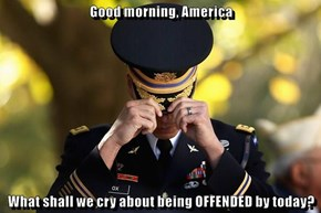 Good morning, America  What shall we cry about being OFFENDED by today?