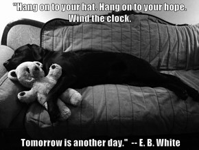 """""""Hang on to your hat. Hang on to your hope. Wind the clock.    Tomorrow is another day.""""  -- E. B. White"""