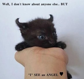 Well, I don't know about anyone else.. BUT        *I* SEE an ANGEL ♥