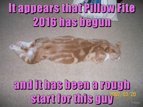 It appears that Pillow Fite 2016 has begun  and it has been a rough start for this guy