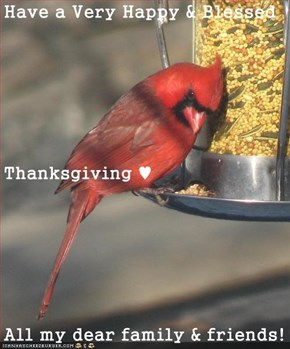Have a Very Happy & Blessed Thanksgiving ♥ All my dear family & friends!