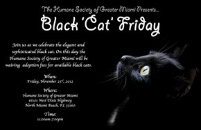 Today, 4 yrs ago... Black Cat Friday!