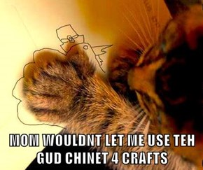 MOM WOULDNT LET ME USE TEH GUD CHINET 4 CRAFTS