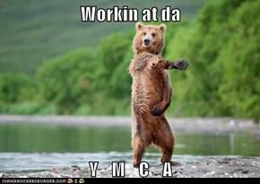 Workin at da   Y    M    C    A