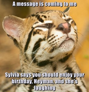 A message is coming to me  Sylvia says you should enjoy your birthday, Heyman, and she's laughing