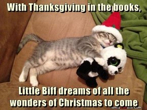 With Thanksgiving in the books,  Little Biff dreams of all the wonders of Christmas to come