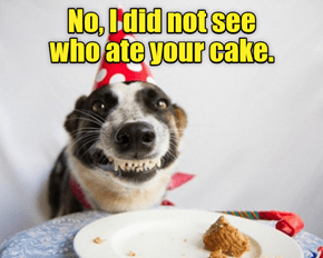 Your cake?