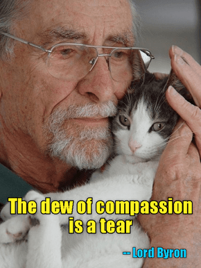 The dew of compassion