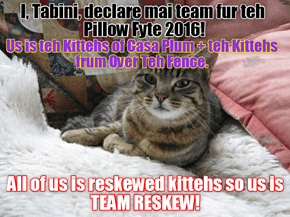 Team Reskew to teh Pillow Fyte 2016