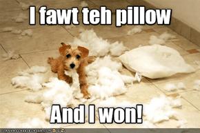Good Boy! - Pillow Fyte 2016