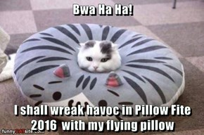 Bwa Ha Ha!  I shall wreak havoc in Pillow Fite 2016  with my flying pillow