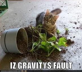 IZ GRAVITYS FAULT