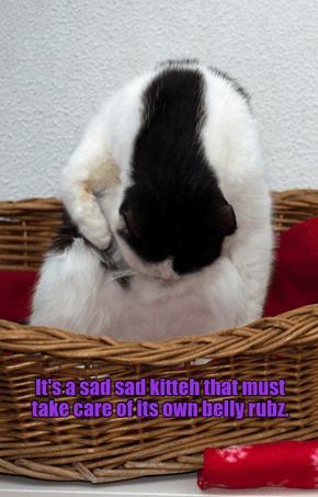 Poor neglected kitteh