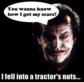 I fell into a tractor's nuts...