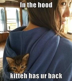 In the hood  kitteh has ur back