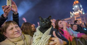 Sad Cat in a Sweater Gets a Photoshop Battle to (Hopefully) Cheer Him Up