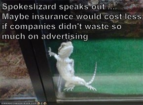 Spokeslizard speaks out ...                                 Maybe insurance would cost less if companies didn't waste so much on advertising