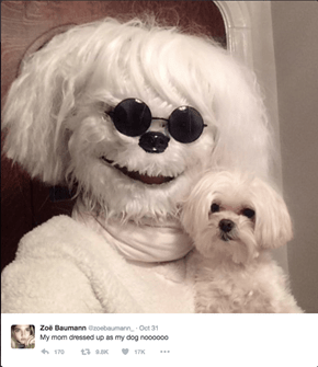 Nightmare of the Day: This Mom Dressed Up Like Her Dog and Now None of Us Are Sleeping Tonight