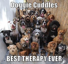 Doggie Cuddles  BEST THERAPY EVER
