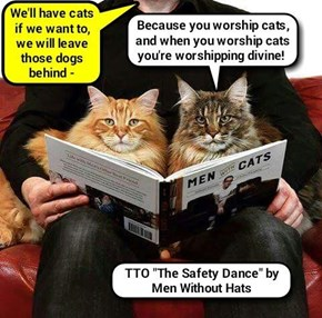 """The Kitty Lap"" (TTO ""The Safety Dance"" by Men Without Hats)   (recaption: http://tinyurl.com/hu7fuh7"