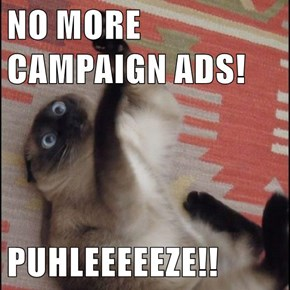 NO MORE CAMPAIGN ADS!  PUHLEEEEEZE!!