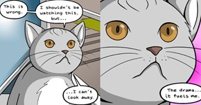 These Hilarious Web Comics Are All Based off of Random Cat Gifs