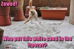 Zowee!  Who put this white sand in the freezer?