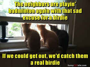 The neighbors are playin' badminton again with that sad excuse for a birdie  If we could get out, we'd catch them a real birdie