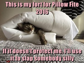 This is my fort for Pillow Fite 2016  If it doesn't protect me, I'll use it to slap somebody silly