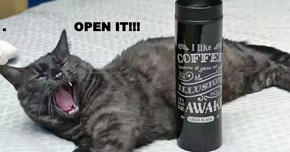 .                 OPEN IT!!!