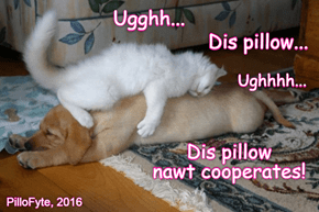 Puppy Pillows Are Really Only Good For One Thing.