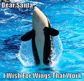 Dear Santa  I Wish For Wings That Work