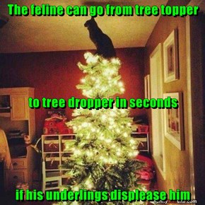 The feline can go from tree topper to tree dropper in seconds if his underlings displease him