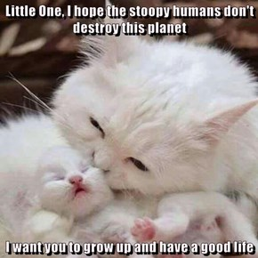Little One, I hope the stoopy humans don't destroy this planet  I want you to grow up and have a good life