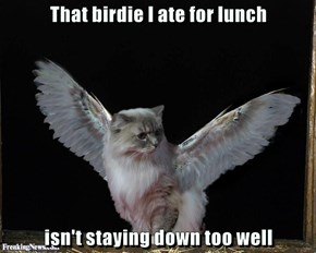 That birdie I ate for lunch  isn't staying down too well