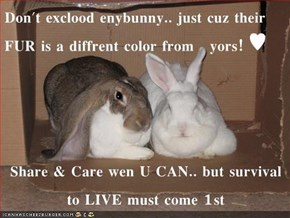 Don't exclood enybunny.. just cuz their FUR is a diffrent color from   yors! ♥  Share & Care wen U CAN.. but survival to LIVE must come 1st