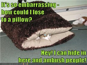It's so embarrassing -                 how could I lose                                          to a pillow?  Hey! I can hide in                           here and ambush people!