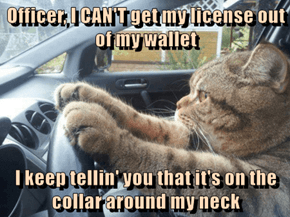 Officer, I CAN'T get my license out of my wallet  I keep tellin' you that it's on the collar around my neck