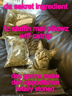 pillow fyte sekret weponz