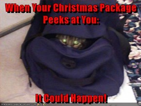 When Your Christmas Package Peeks at You:...